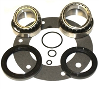 ZF E-Brake Bearing & Seal Kit, BK300BDZF