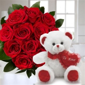 Dozen roses & teddy bear