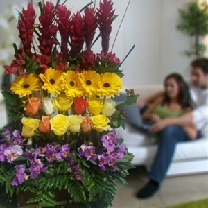 Exotic mixed colors arrangement