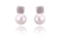 ELEGANT CULTURED SALTWATER PEARL EARRINGS