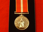 The Active Service Medal ( Full Size Commemorative Medal )