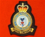 RAF Brize Norton Station Crest Badge ( Royal Air Force )