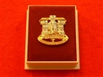 Quality The Devonshire and Dorset Regiment Boxed Infantry Enamel Lapel Badge ( DDR Lapel Badge )