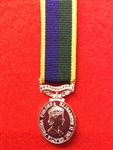 TA Efficiency ER11 Miniature Medal.