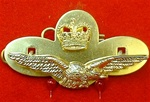 RAF Officers Hat Badge ( RAF Officers Side Cap Badge ) ER 11 Albatross plus Queens Crown
