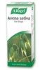 A Vogel Avena Sativa 50ml