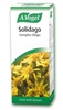 A Vogel Solidago Complex 50ml