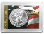 2014 American Silver Eagle in Display