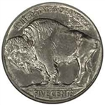 1913-S Type 2 Buffalo Head Nickel Coins