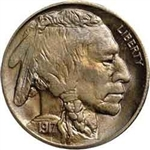 1917-P Buffalo Head Nickel Coins