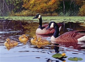 1000pc Platts Pond jigsaw puzzle by Cobble Hill Puzzle Co.