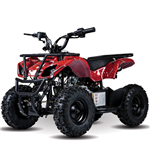 LITTLE EAGLE 60CC ATV
