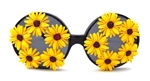 CANARY DAISY RODEO QUEEN GLASSES