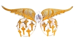 WESTRAY GOLDEN GOD PANTHER WINGS AVIATORS