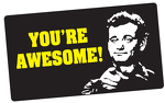 You're Awesome! (Bill Murray)