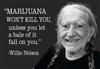 """MARIJUANA WON'T KILL YOU, unless you let a bale of it fall on you."" -Willie Nelson"