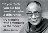 """If you think you are too small to make a difference, try sleeping with a mosquito in the room."" -Dalai Lama"
