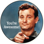 You're awesome (Bill Murray)
