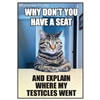 Why don't you have a seat and explain where my testicles went
