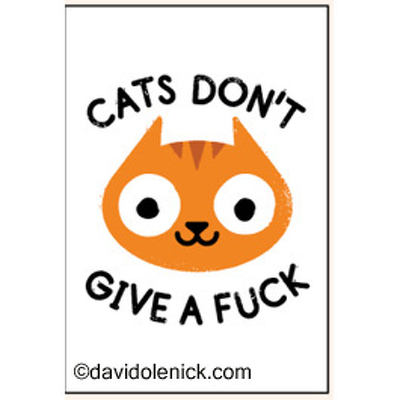 cats don't give a fuck