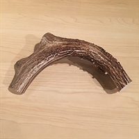 Reindeer Antler Gifts - Large Dog Chew