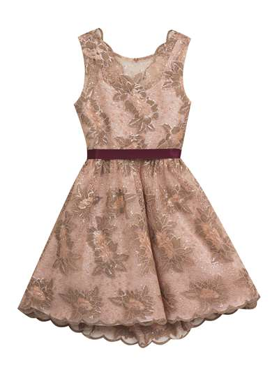 Rose Gold Embroidery Dress With Ribbon Waist, Rare Editions, Big Girls (7-16)
