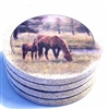 Thirstystone Coasters 4-pc