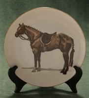 Coupe Plate - Gold Band - Hunter Horse