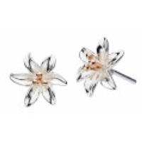 "Sterling Silver & Rose Gold Plated ""Tiger Lily"" Stud Earrings"