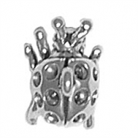 Sterling Silver Charm-Ladybug