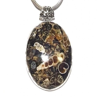 Sterling Silver Pendant/Necklace-Turtella Jasper