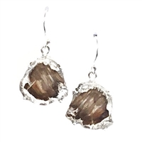 Sterling Silver Dangle Earrings- Petrified Wood