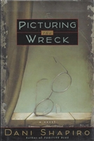 Picturing The Wreck
