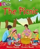 The Picnic - Workbook