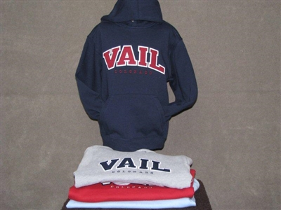 YOUTH APPLIQUE HOODY
