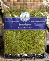 Preserved Spanish Moss