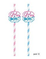 Girl or Boy Straws