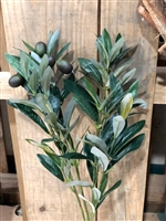 Olive Leaf Spray