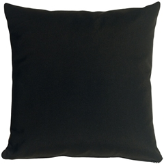 Sunbrella Black 20x20 Outdoor Pillow