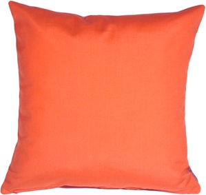 Sunbrella Melon 20x20 Outdoor Throw Pillow