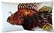 Lionfish Fish Pillow 12x20