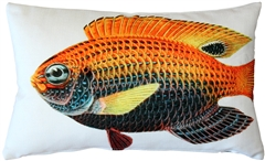 Princess Damselfish Fish Pillow 12x20