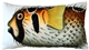 Porcupinefish Fish Pillow 12x20