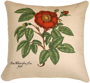 Garden Rose 20x20 Throw Pillow