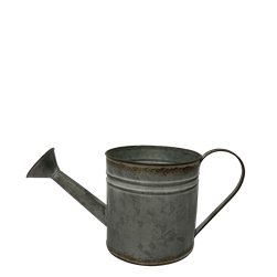 Small Rustic Tin Watering Can with Handle and Liner
