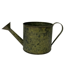 Large Verdigris Watering Can with Handle and Liner