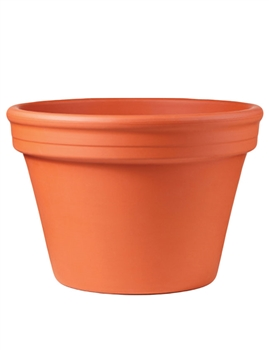 Azalea Terracotta Pot (Click for Sizes and Pricing)