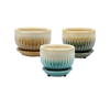 "3.7"" Round Ceramic Fusion Pots w/ Attached Saucer, 3 Assorted Colors, 12 Per Case"