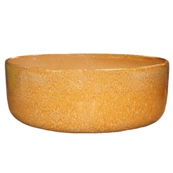 "12"" Glazed Color Bowl - Honey"