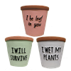 "4.7"" Colored Terracotta Pots with Sayings w/ Drain Holes and Liners, 3 Assorted, 9/case"